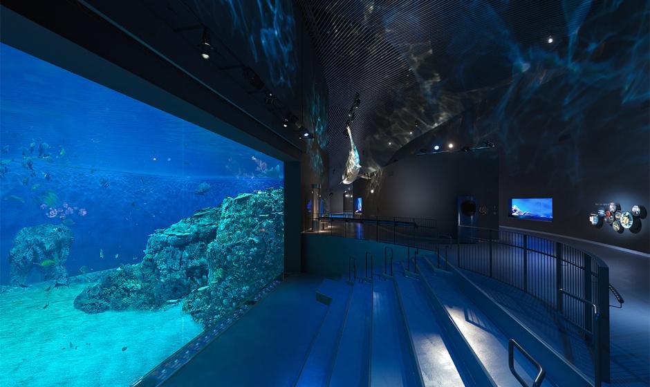 3XN.BlåPlanet.Aquarium